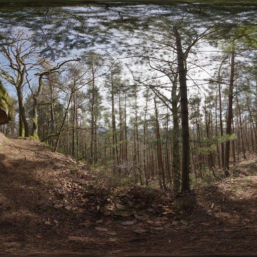 Thumbnail: Pfälzer Forest 01