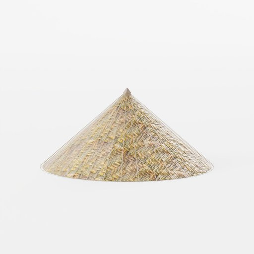 Thumbnail: Palm-leaf conical traditional hat