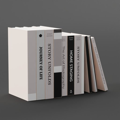 Standing Stack of Books Tidy