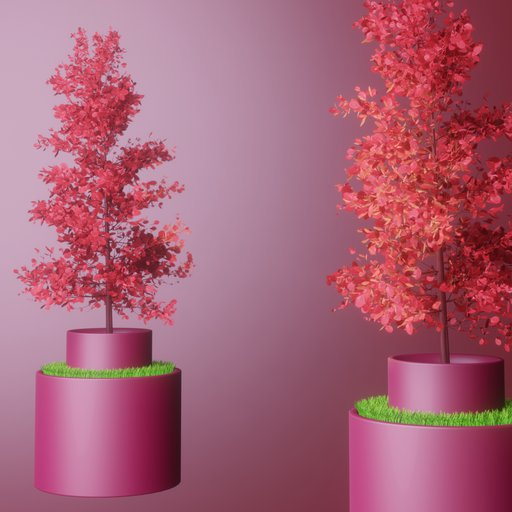 Thumbnail: Potted red leaved tree and grass