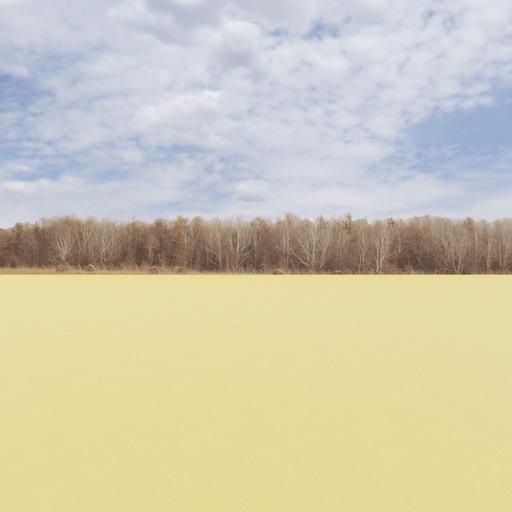 Treeline of Autumn Backdrop 002