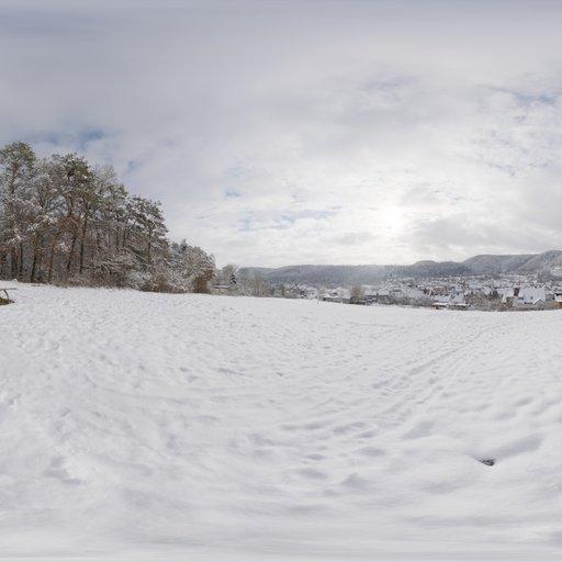 Thumbnail: Snowy Hillside