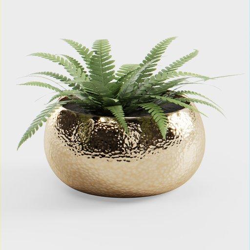Thumbnail: Plant Pot Big