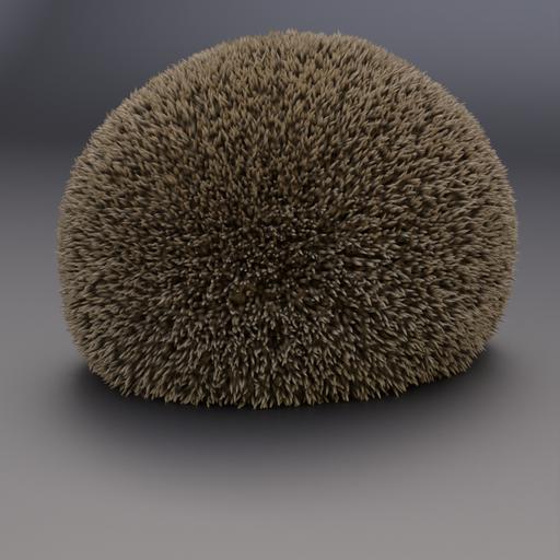 Thumbnail: Hedgehog 2