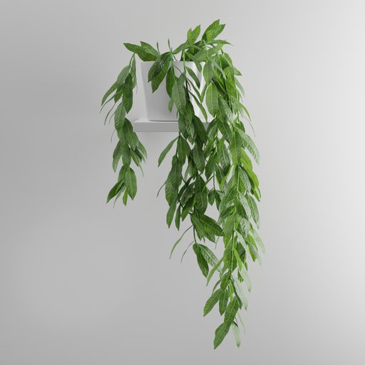 Thumbnail: Indoor Hanging Plant
