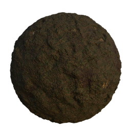 Thumbnail: Mud with grass