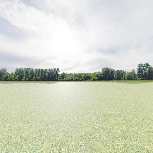 Thumbnail: Greenleaf Treeline Backdrop 007
