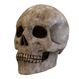 Thumbnail: Decorative old skull