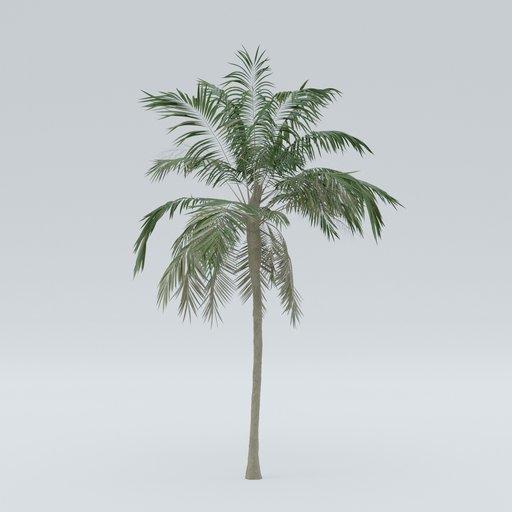 Thumbnail: Palm V2