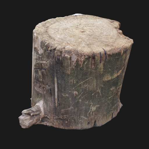 Thumbnail: Photoscanned wood log 001