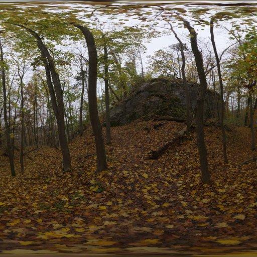 Thumbnail: Autumn Forest 01