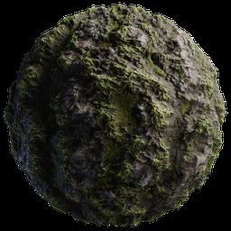 Thumbnail: Rock Moss