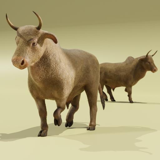 Thumbnail: Ox animal