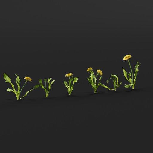 Thumbnail: Dandelion Set
