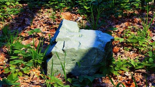 Rock - photoscanned medium