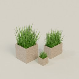 Thumbnail: Decoration grass