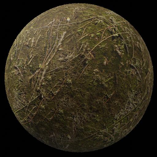 Thumbnail: Moss