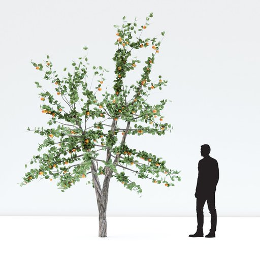 Thumbnail: Apple tree with red apples