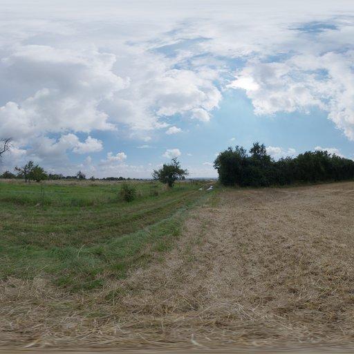 Thumbnail: Dry Hay Field