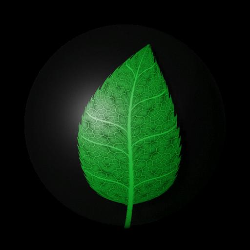Thumbnail: Leaf