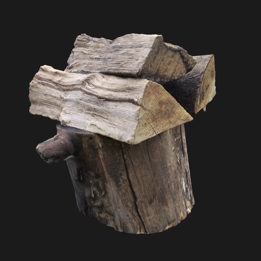 Thumbnail: Photoscanned Wood Logs 002