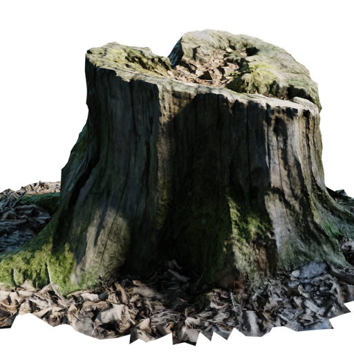 Thumbnail: Tree Stump