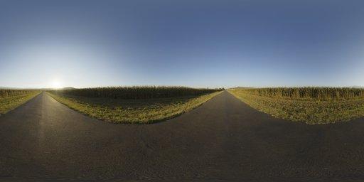 Mealie Road