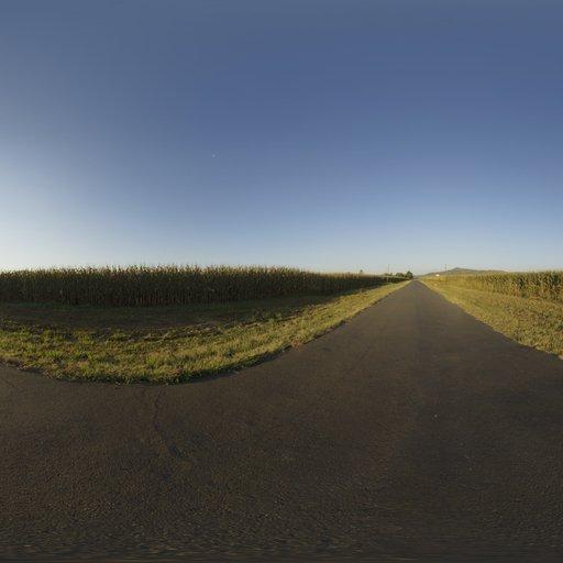 Thumbnail: Mealie Road
